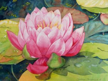 3325-Watercolours Basics and Beyond Kathryn Christensen.jpg