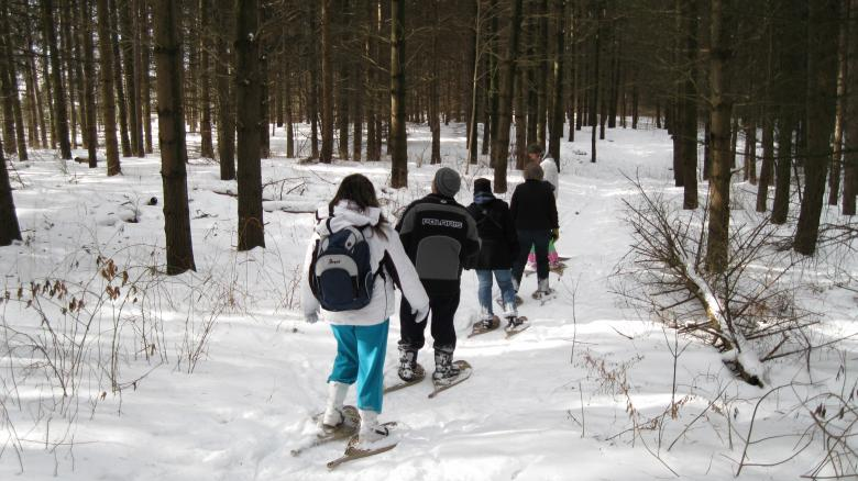 Snowshoes and Snow-Clues.jpg