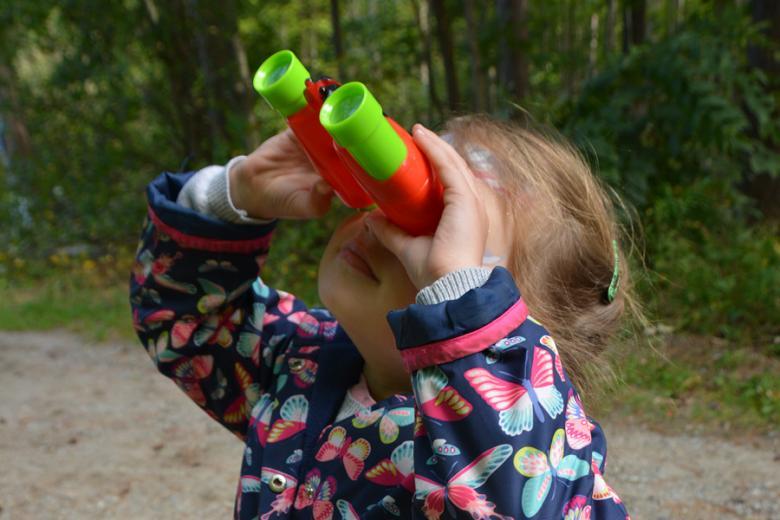 Its for Birds York Scene.jpg