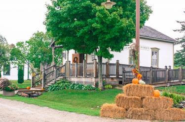 pioneer village harvest fest (3).jpg
