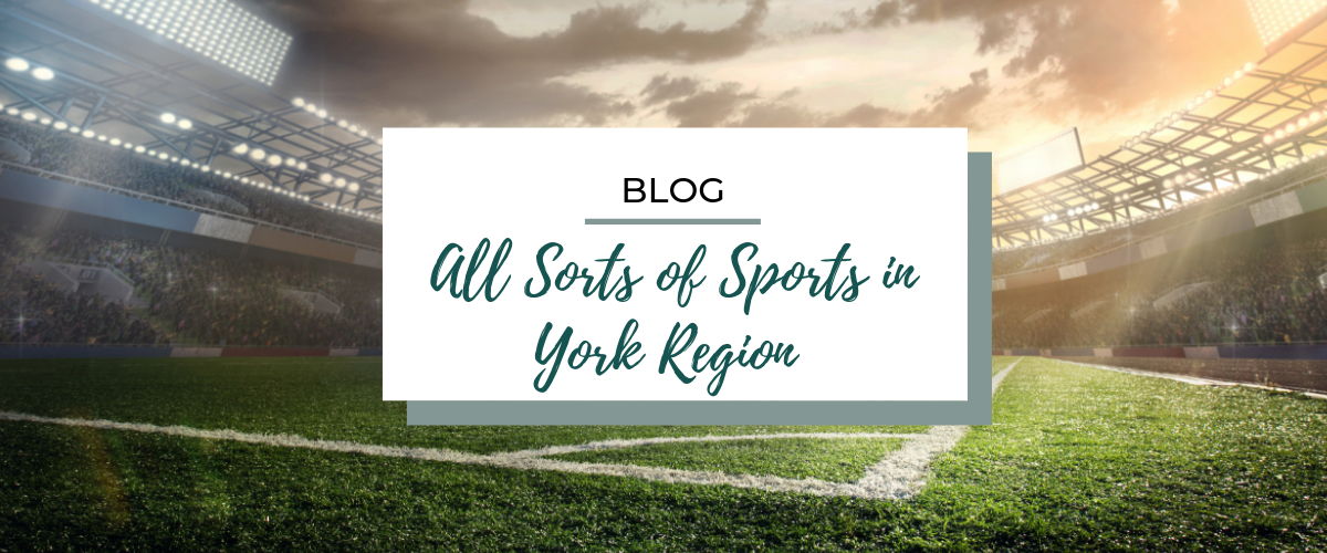 All Sorts Of Sports In York Region Experience York Region