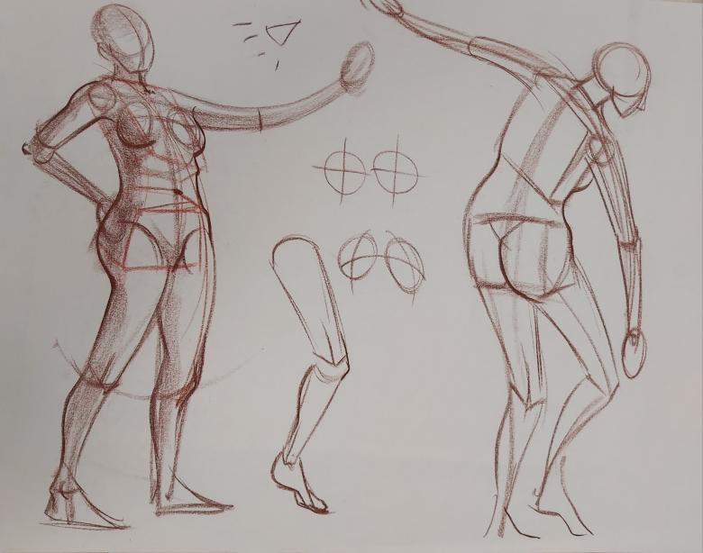 demo-chalk-anatomy-structure-life-drawing-advanced.jpg